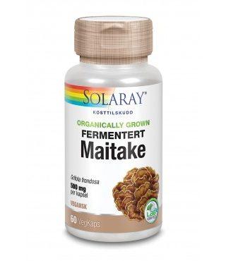 fermentert_maitake_-_19853