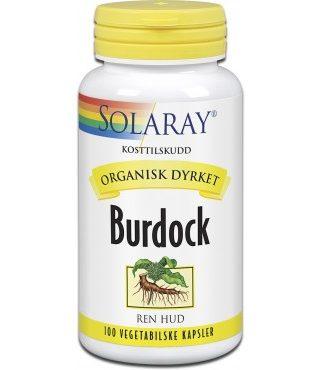 srin-burdock-12119_1